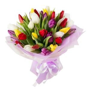 Тюльпаны 35шт №ТУ25