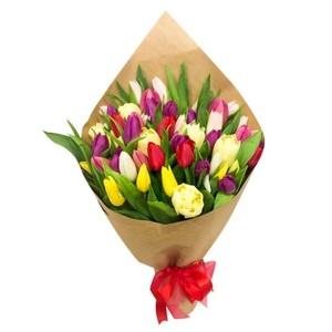 Тюльпаны 37шт №ТУ30