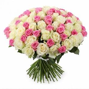 101 бело-розовая роза 60 см Акция