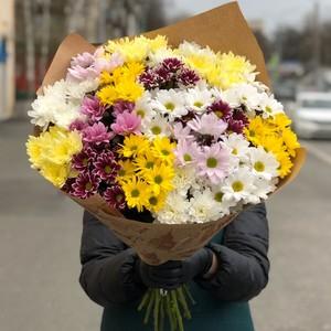 Букет хризантема кустовая 15шт  № АН-017