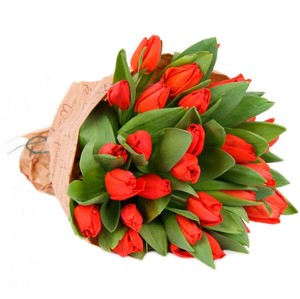 Тюльпаны 35шт №ТУ28