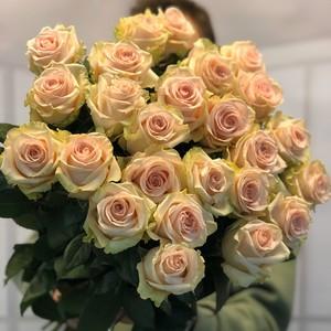 """Роза Эквадор Premium """"Фрутетта"""""""