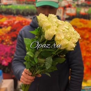 25 роз Голландия Premium 50см №РС-0101