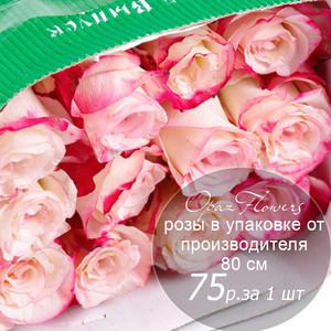 Розы в пачке от производителя   высота 80 см  ар.RO-021