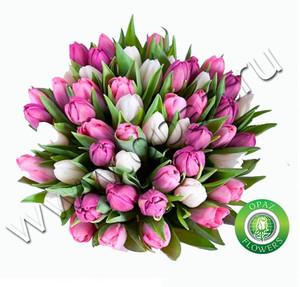 № Т-1803 51 тюльпан Цена: 2550 руб.