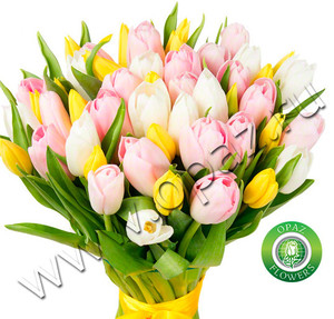 № A-1812 37 тюльпанов Цена: 1850 руб.