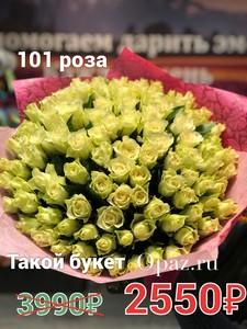 101 роза кения бело-зеленая в оформлении