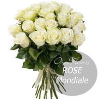 Букет из  25  роз  Мондиаль  60 см