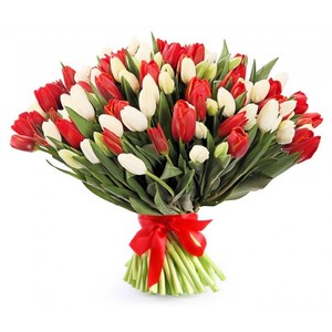 Тюльпаны 75шт №ТУ48