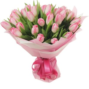 Тюльпаны 25шт №ТУ37