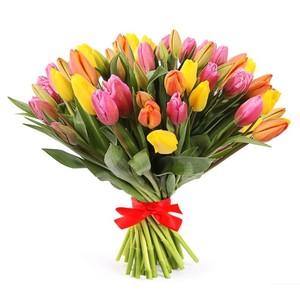 Тюльпаны 35шт №ТУ49