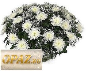 № A-1104 В основу корзины входит 35 хризантема.
