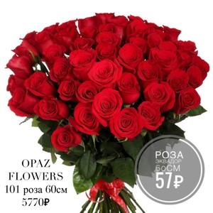 101 красная роза Эквадор 70 см крупный бутон. По Вашему желанию цвет может быть изменён.