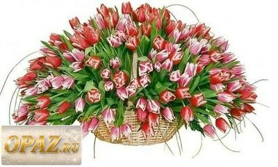 № A-1116 В основу корзины входит 151 роза.
