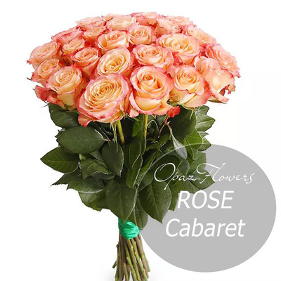 "Роза Эквадор Premium ""Кабаре"""