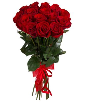 Роза Эквадор Premium 15шт 60см в оформленинии№ РО-09