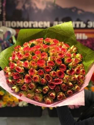 101 розовая роза Кения 40 см
