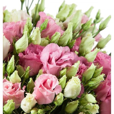 Эустома розовая 89руб от 10шт