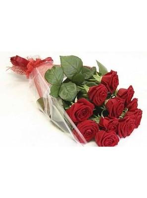 Роза Эквадор Premium 9шт 60см в оформленинии№ РО-02